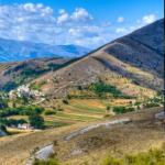 Benefici Olio Extra-Vergine d'oliva D.O.P Petruziano | Frantoio Montecchia | Olio Extravergine di Oliva Abruzzo