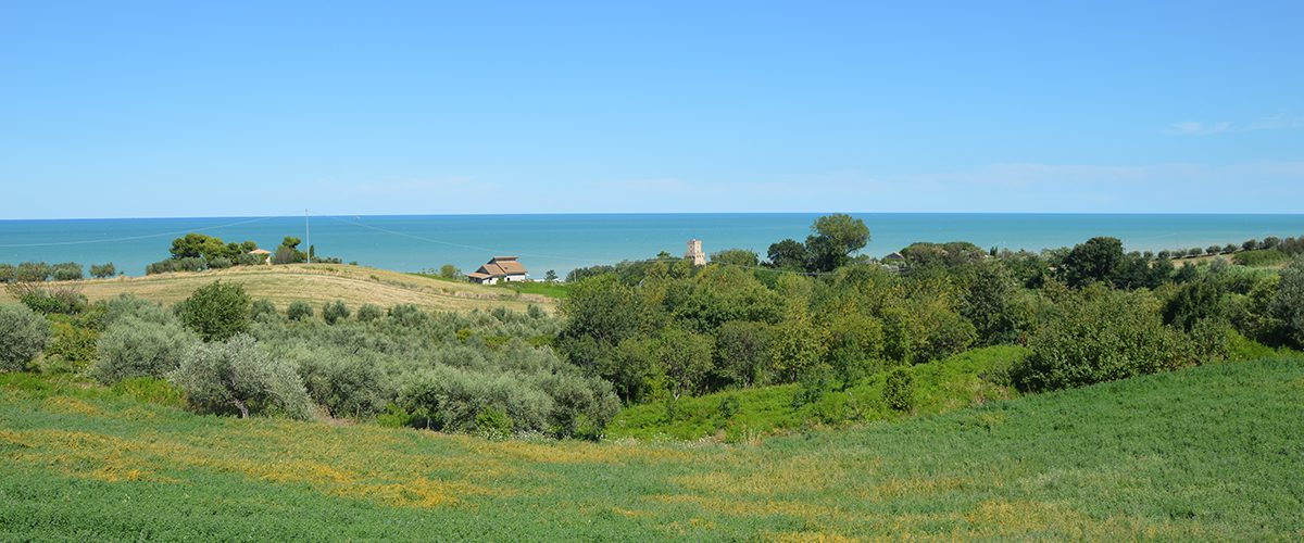 Villa in campagna Villino Parco del Cerrano Pineto 24